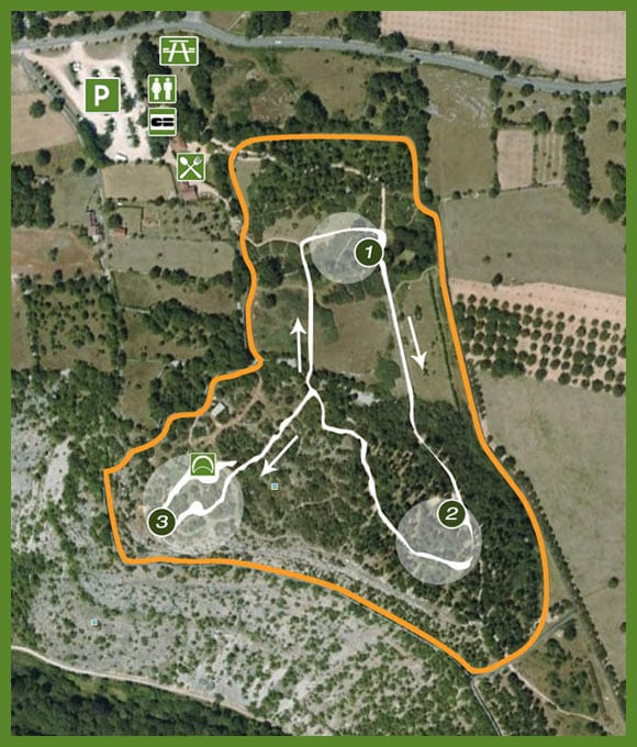 plan du parc de la forêt des singes