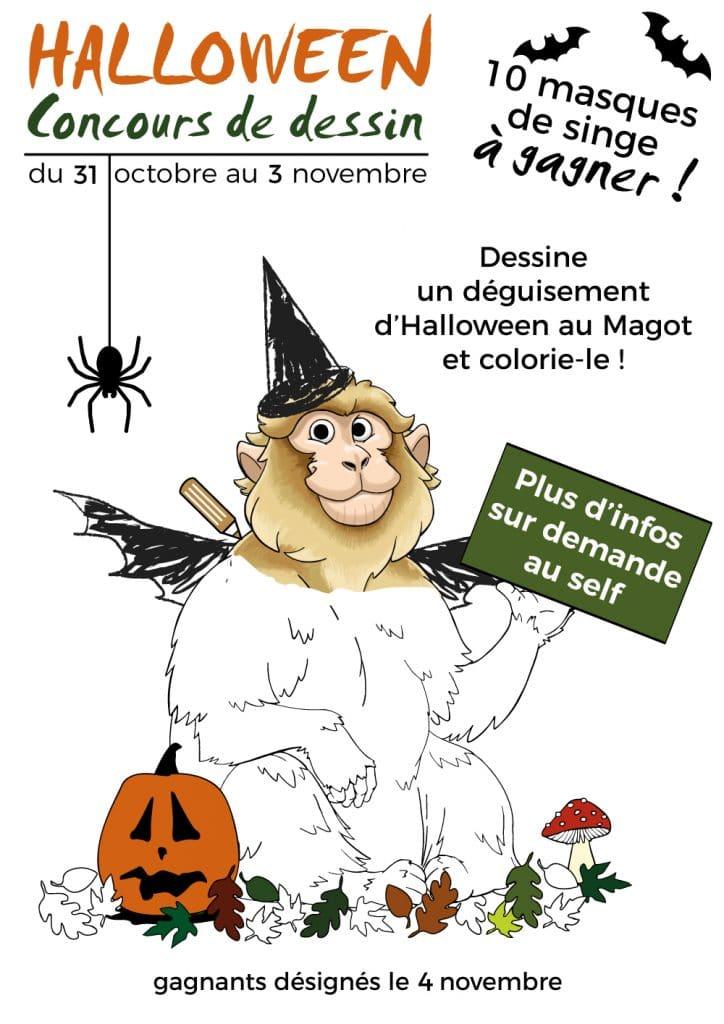 Participez Au Concours Dessin Halloween La Foret Des Singes De Rocamadour